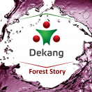 Dekang Forest Story 16mg